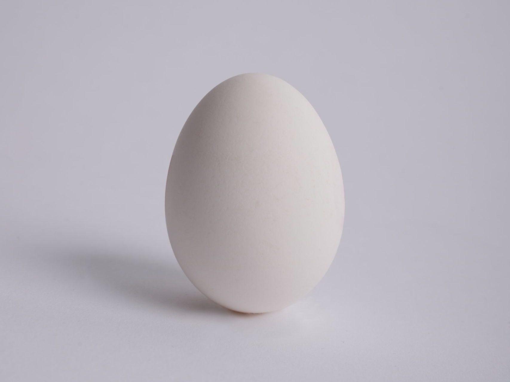 Experiment Auftrieb – das magische Ei